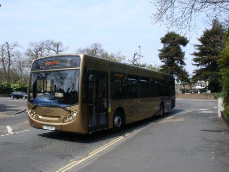 goldline route 1