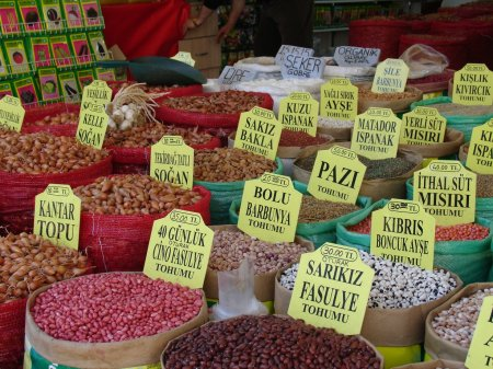 seed market Istanbul