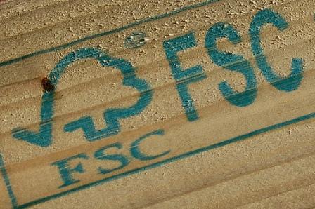 FSC legitimises rainforest destruction