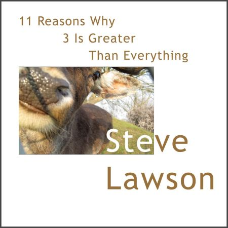 11 Reasons Why 3 Is Greater Than Everything - Steve Lawson