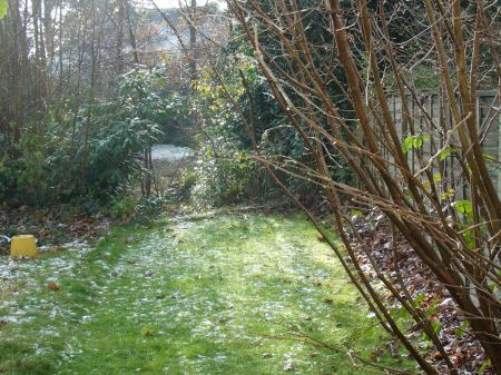 light sprinkling of snow in the garden