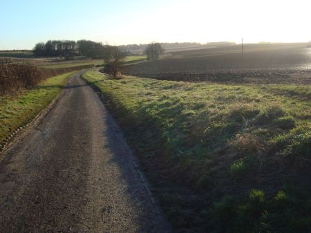 afternoon walk along country lane