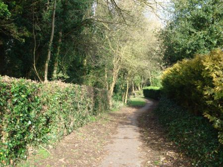Washingborough-Heighington path through the woods