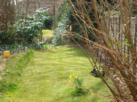 a lovely warm spring day in the garden