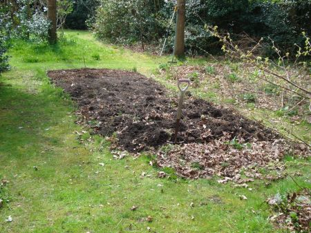 dug vegetable patch