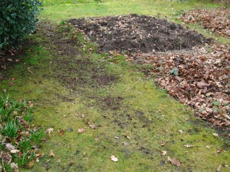 bare patches seeded with grass seed