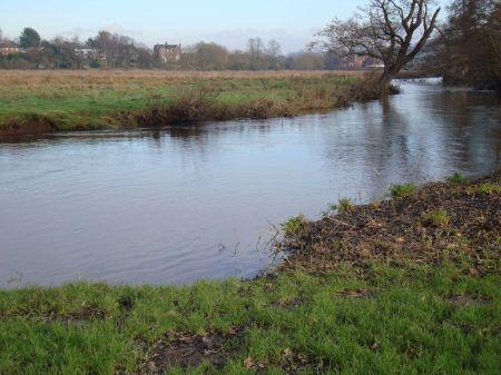 Godalming River Wey