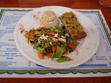 pastel de puerros, arroz integral y ensalada