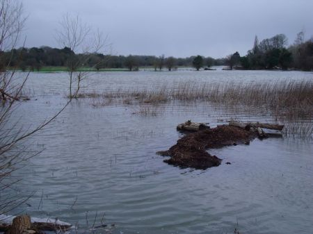 Farnham Bishop's Meadow flooded