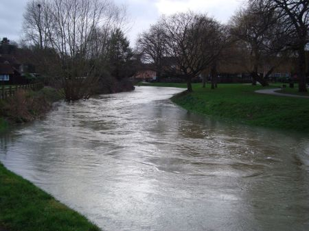 Farnham River Wey Gostrey Meadow