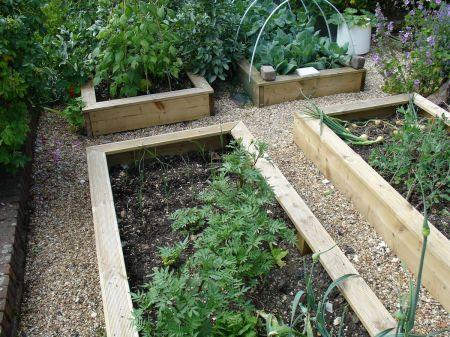 guerilla gardening at Alton Station