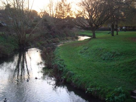 River Wey flowing through Gostrey Meadow