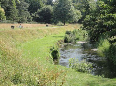 riverside walk along River Wey