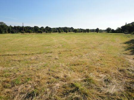 Bishop's Meadow