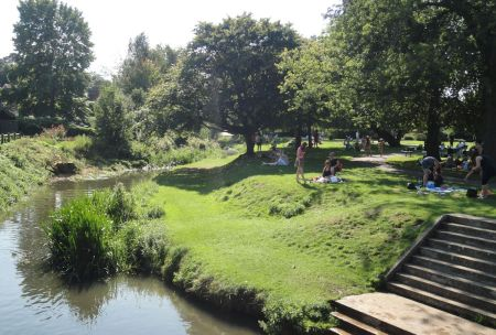 Gostrey Meadow