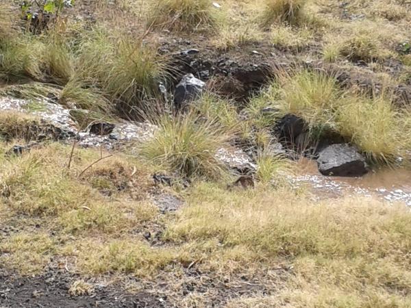 un arroyo en Barranco San Felipe