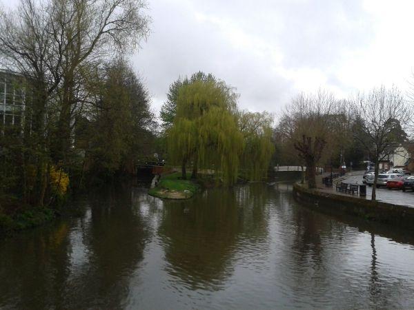 River Wey from Debenhams
