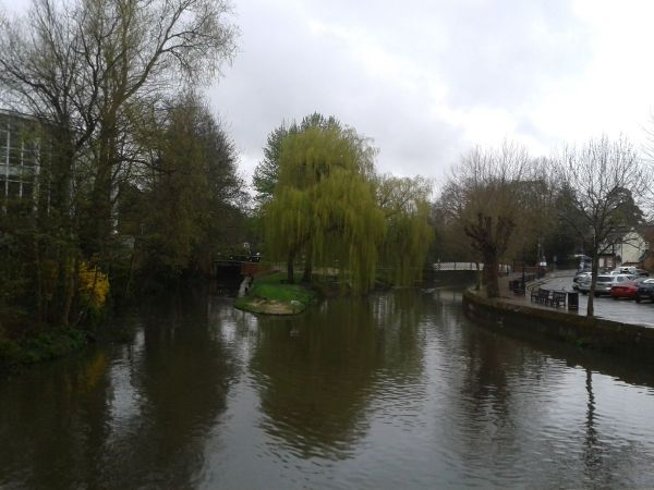 River Wey from Debenhams
