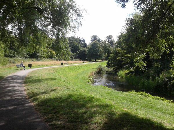River Wey riverside walk